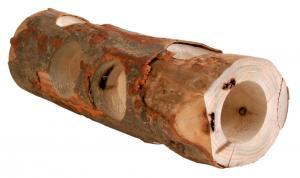 """""""NL"""" Gnagartunnel trä 30 cm"""