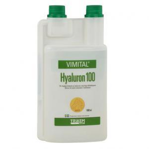 Hyaluron 1000 ml