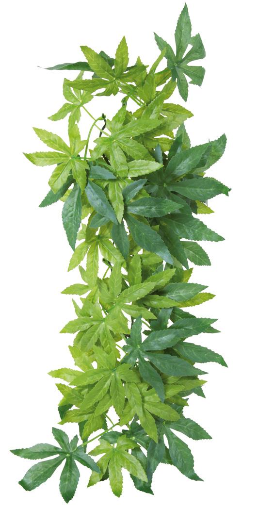 Hängväxt, silke, Abutilon, ø 20 × 30 cm