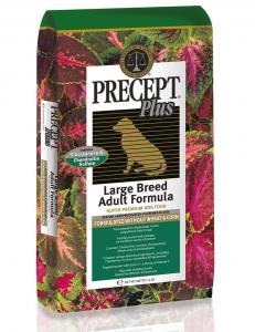 Precept Plus Large Breed Adult 12kg
