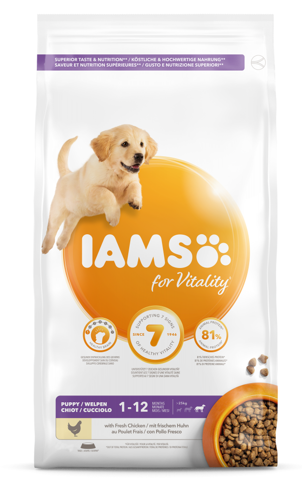 Iams Dog Pup & Jr Large 3 kg